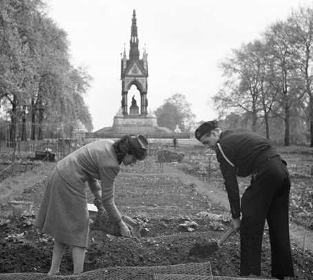 Londoners growing vegetables in Kensington Gardens during the Second World War.