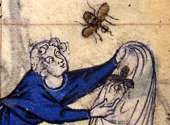 Man catching bees in a bag.  Book of Hours 14th century. By permission of The British Library. Stowe 17.