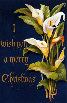 'I wish you a merry Christmas', with lilies, 1876. Catalogue reference: COPY 1/33