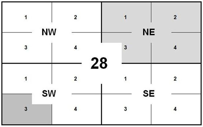 an example of a sheet number