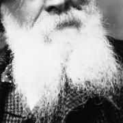 COPY1-408 Close up of his beard