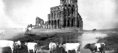 Image of Whitby Abbey