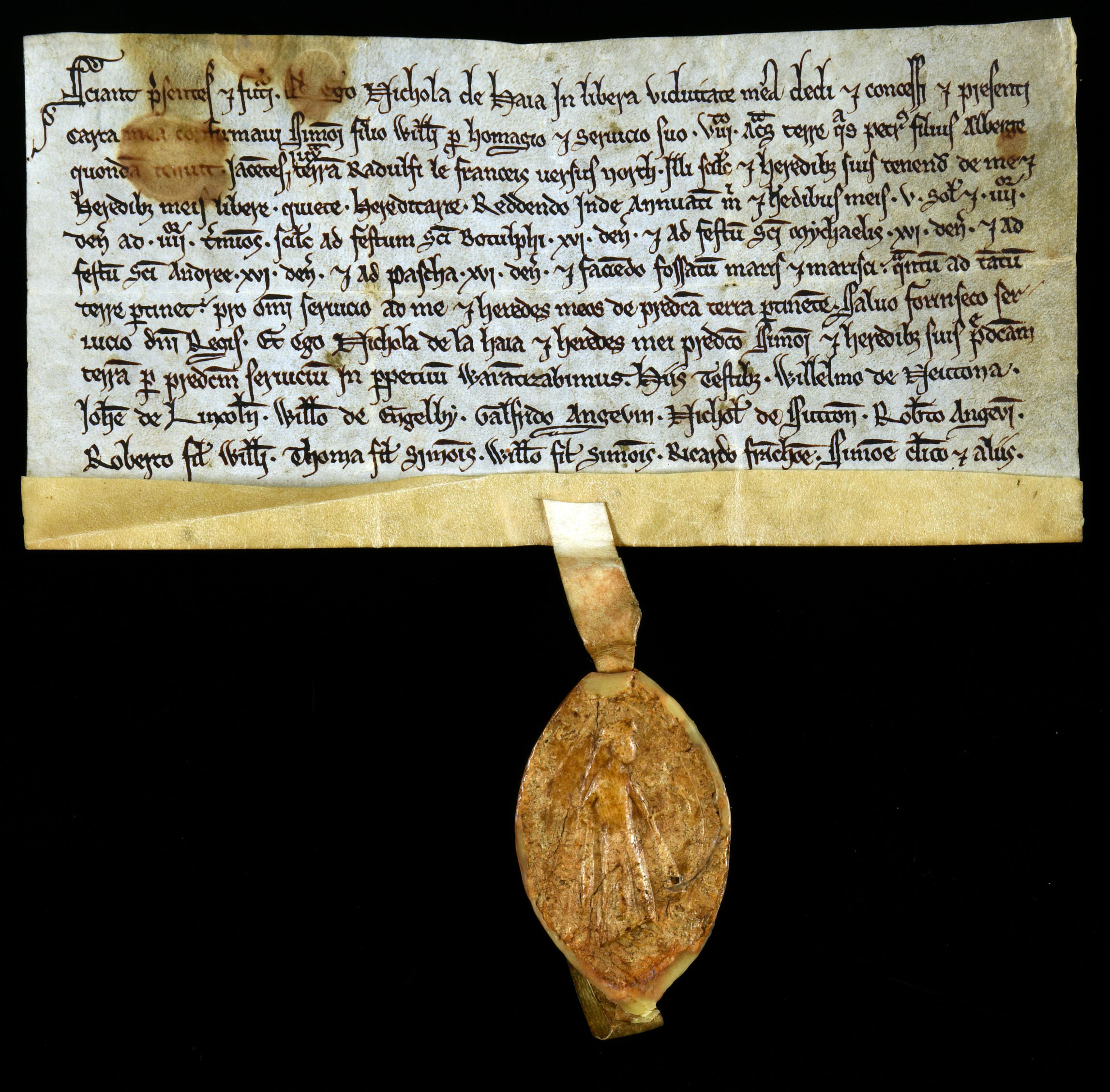 DL25/2890 Nichola de Haia, grant of eight acres late of Peter son of Alberge, Lincolnshire 1201-1266