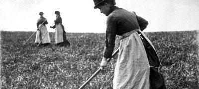 Image of East Anglia 1886