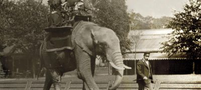 Image of London Zoo 1897