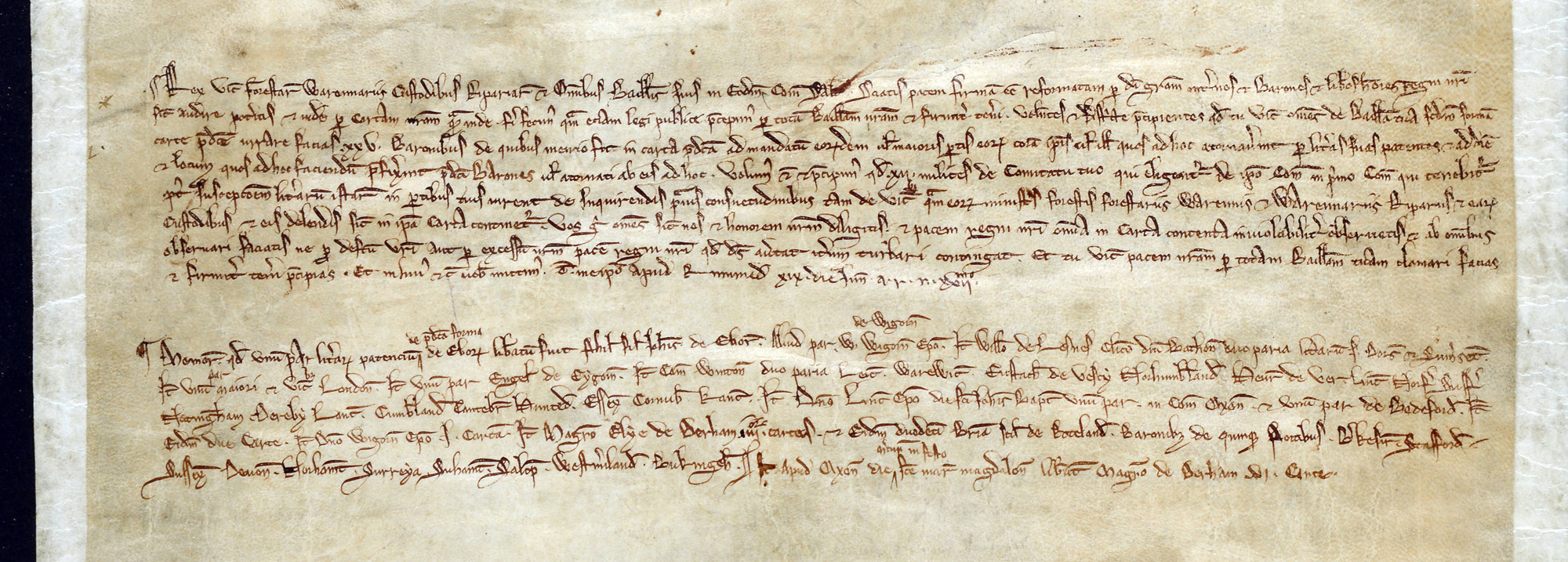 Study extract 1 from letters and grants of King John 1215