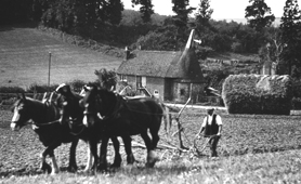 Photograph of farmer ploughing near Farningham, Kent, c1930 (Catalogue reference: INF 9/836)