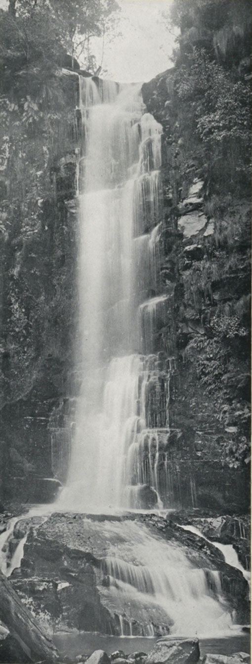 Erskine Falls, Lorne, Victoria, Australia 1912. Catalogue reference: CO 1069/623