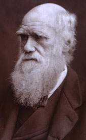 Charles Darwin, 1882 (Catalogue reference: COPY 1/57)