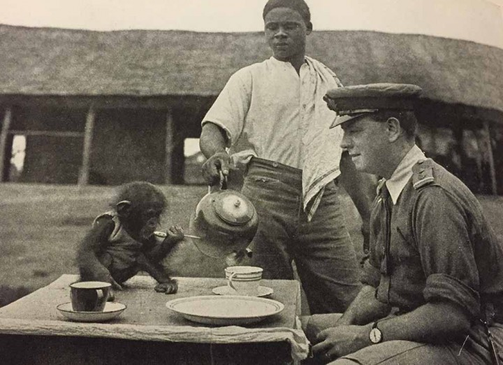 Josephine the expedition chimp breakfasting with an officer