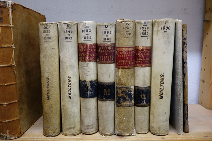A collection of records bound into volumes